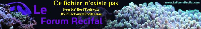 RVRT (HerVé Reef Tools) : utilitaires pour aquariums récifaux - Page 2 Herve-PRD.1